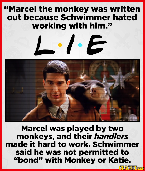 Marcel the monkey was written out because Schwimmer hated working with him. L.IE Marcel was played by two monkeys, and their handlers made it hard t