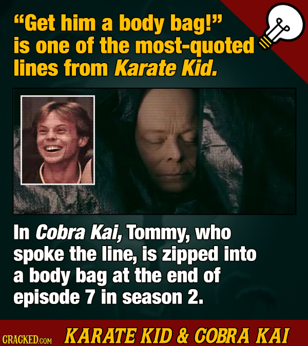 20 'Karate Kid' And 'Cobra Kai' Now You Know Facts (Plus Easter Eggs)