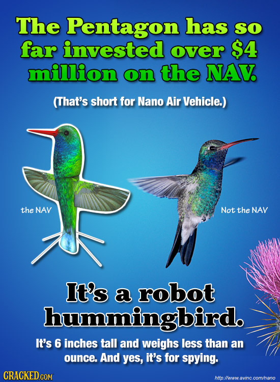 The Pentagon has So far invested over $4 million on the NAV (That's short for Nano Air Vehicle.) the NAV Not the NAV It's a robot hummingbird. It's 6