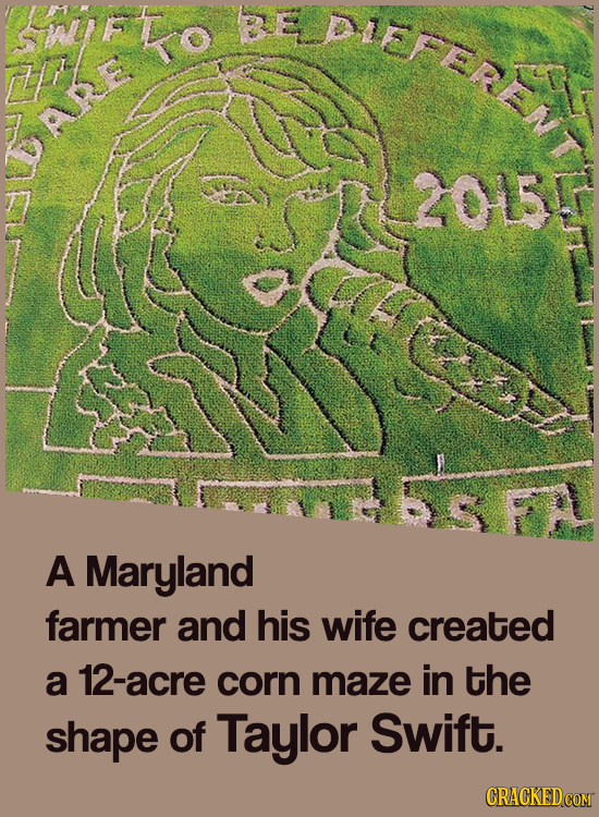 SWFKO PIEFEREA 2015 A Maryland farmer and his wife created a 12-acre corn maze in the shape of Taylor Swift.