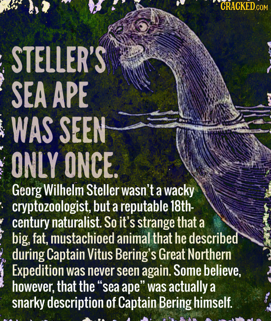 CRACKED c COM STELLER'S SEA APE WAS SEEN ONLY ONCE. Georg Wilhelm Steller wasn't a wacky cryptozoologist, but a reputable 18th- century naturalist. So