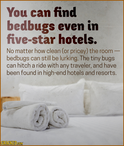 You can find bedbugs even in five-star hotels. No matter how clean (or pricey) the room bedbugs can still be lurking. The tiny bugs can hitch a ride w