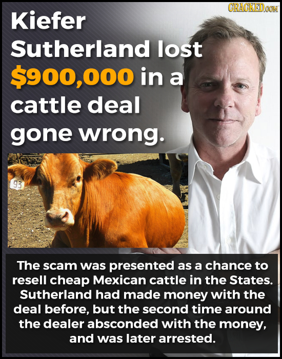 CRACKEDGON Kiefer Sutherland lost $900,000 in a cattle deal gone wrong. 93 The scam was presented as a chance to resell cheap Mexican cattle in the St
