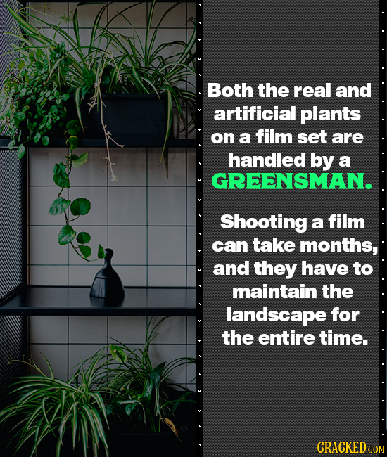 Both the real and artificial plants on a film set are handled by a GREENSMAN. Shooting a film can take months, and they have to maintain the landscape