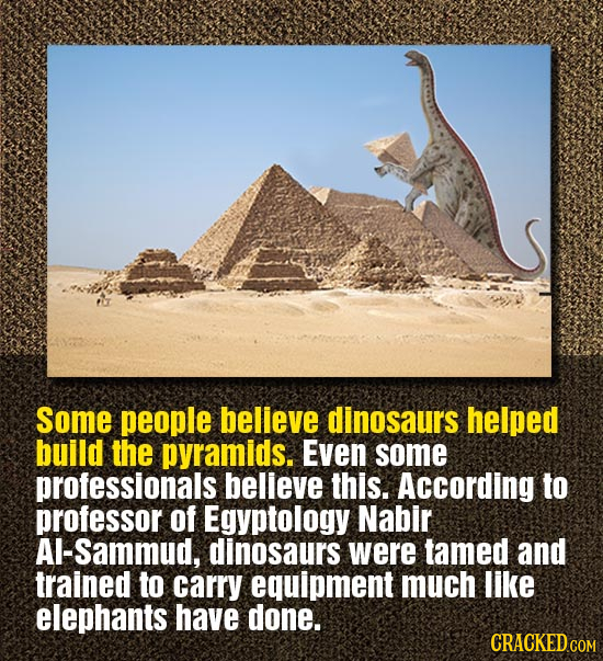 Some people believe dinosaurs helped build the pyramids. Even some professionals believe this. According to professor of Egyptology Nabir A-sammud, di