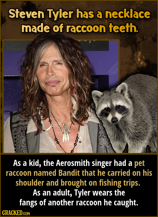 Steven Tyler has a necklace made of raccoon teeth. As a kid, the Aerosmith singer had a pet raccoon named Bandit that he carried on his shoulder and b