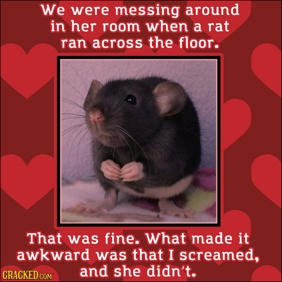 We were messing around in her room when a rat ran across the floor. That was fine. What made it awkward was that I screamed, and she didn't. CRACKED C