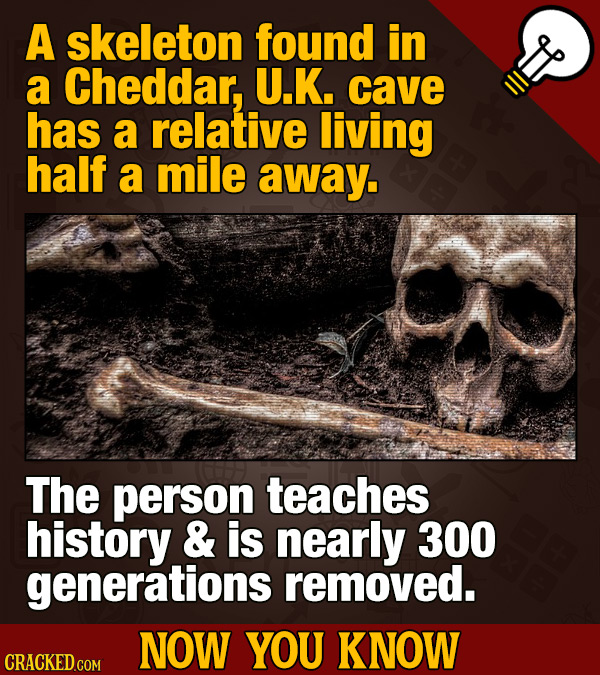 A skeleton found in a Cheddar, U.K. cave has a relative living half a mile away. The person teaches history & is nearly 300 generations removed. NOW Y