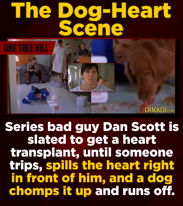 The Dog-Heart Scene ONE TREE HILL CRACKED CO Series bad guy Dan Scott is slated to get a heart transplant, until someone trips, spills the heart right