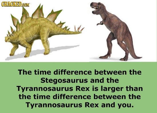CRACKEDCON The time difference between the Stegosaurus and the Tyrannosaurus Rex is larger than the time difference between the Tyrannosaurus Rex and