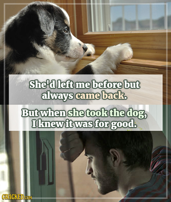 She'd left me before but always came back. But when she took the dog, I knew it was for good.