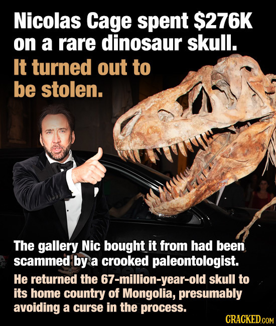Nicolas Cage spent $276K on a rare dinosaur skull. It turned out to be stolen. The gallery Nic bought it from had been scammed by a crooked paleontolo