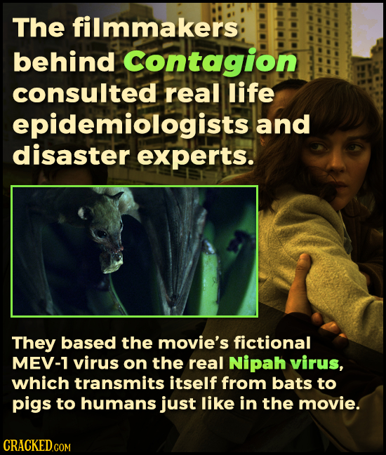 The filmmakers behind Contagion consulted real life epidemiologistsa and disaster experts. They based the movie's fictional MEV-1 virus on the real Ni