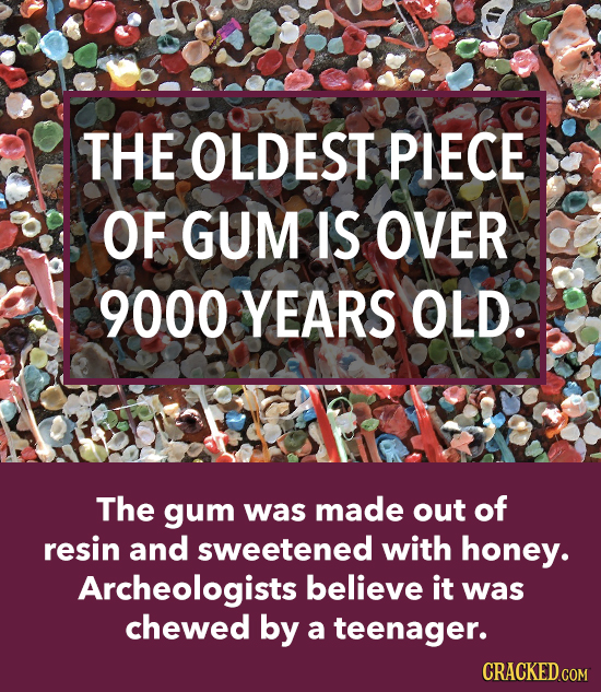 THE OLDEST PIECE OF GUM IS OVER 9000 YEARS OLD. The gum was made out of resin and sweetened with honey. Archeologists believe it was chewed by a teena