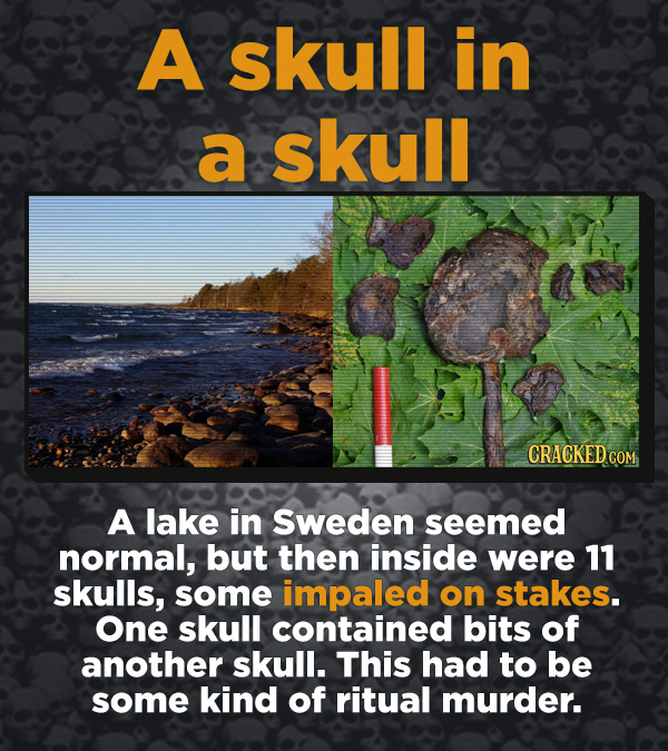 Creepy Discoveries That People Stumbled Into - A lake in Sweden seemed normal, but then inside were 11 skulls, some impaled on stakes. One skull conta
