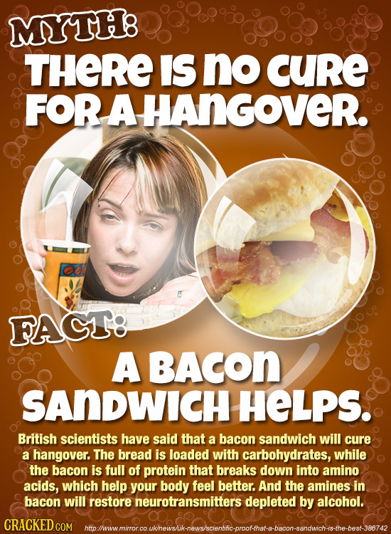 MYTH8 THERE IS no CURE FOR AHANGOVER. FACT: A BACON SANDWICH HELPS. British scientists have said that a bacon sandwich will cure a hangover. The bread