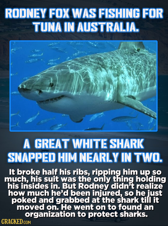 RODNEY FOX WAS FISHING FOR TUNA IN AUSTRALIA. A GREAT WHITE SHARK SNAPPED HIM NEARLY IN TWO. It broke half his ribs, ripping him up so much, his suit