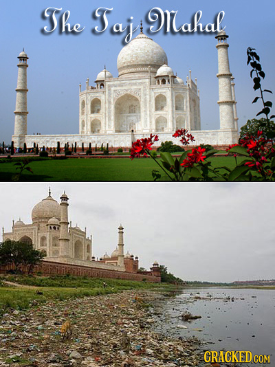 The Taj ahal CRACKEDc COM