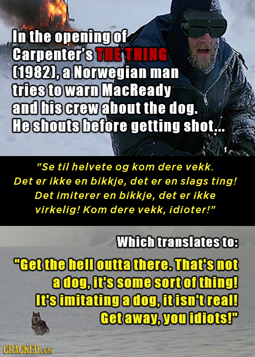 In the opening of Carpenter's THE THING (1982), a Norwegian man tries to warn MacReady and his crew about the dog. He shouts before getting shot... S