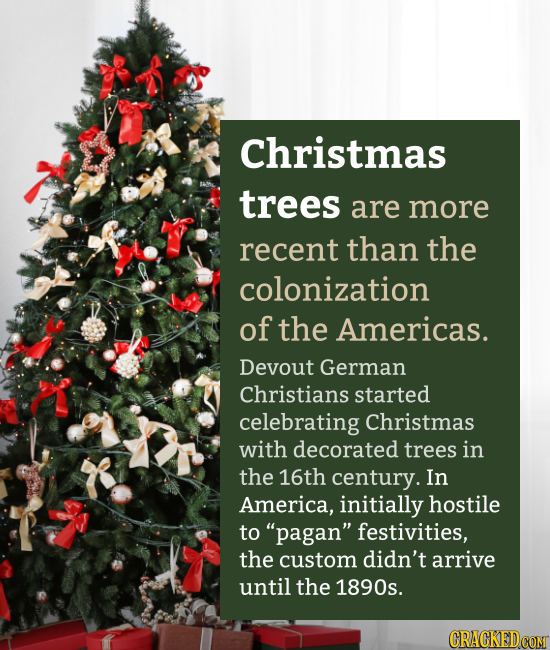 Christmas trees are more recent than the colonization of the Americas. Devout German Christians started celebrating Christmas with decorated trees in