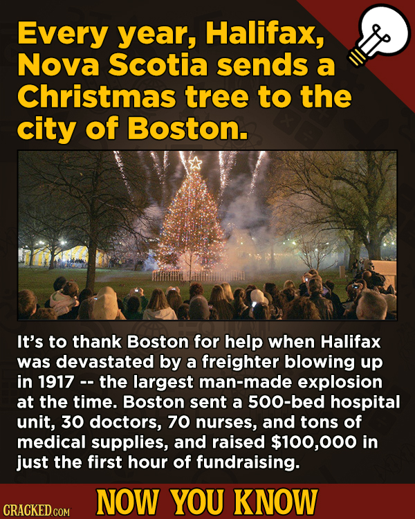 A Fresh Boatload Of Movie And General Trivia -  Every year, Halifax, Nova Scotia sends a Christmas tree to the city of Boston.