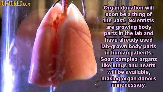 Organ donation will soon be a thing of the past. Scientists are growing body parts in the lab and have already used grown body parts in human patients