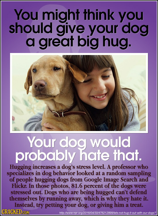 You might think you should give your dog a great big hug. Your dog would probably hate that. Hugging increases a dog's stress level. A professor who s
