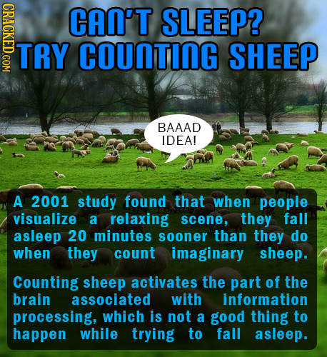 CRACKED.COM CAN'T SLEEP? TRY COUNTING SHEEP BAAAD IDEA! A 2001 study found that when people visualize a relaxing scene, they fall asleep 20 minutes so
