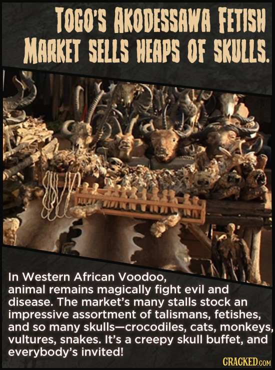 TOGO'S AKODESSAWA FETISH MARKET SELLS HEAPS OF SKULLS. In Western African Voodoo, animal remains magically fight evil and disease. The market's many s