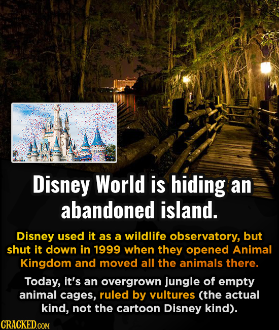 Disney World is hiding an abandoned island. Disney used it as a wildlife observatory, but shut it down in 1999 when they opened Animal Kingdom and mov