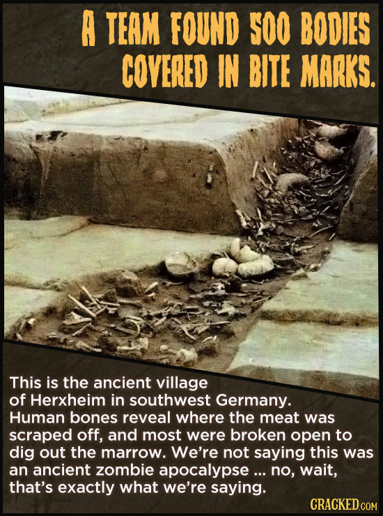 A TEAM FOUND S00 BODIES COVERED IN BITE MARKS. This is the ancient village of Herxheim in southwest Germany. Human bones reveal where the meat was scr