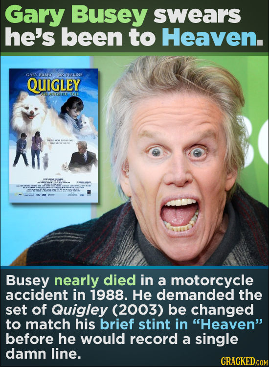 Gary Busey swears he's been to Heaven. GARY BUSEY OZPERKINS QUIGLEY ANANGERGTAIL Busey nearly died in a motorcycle accident in 1988. He demanded the s