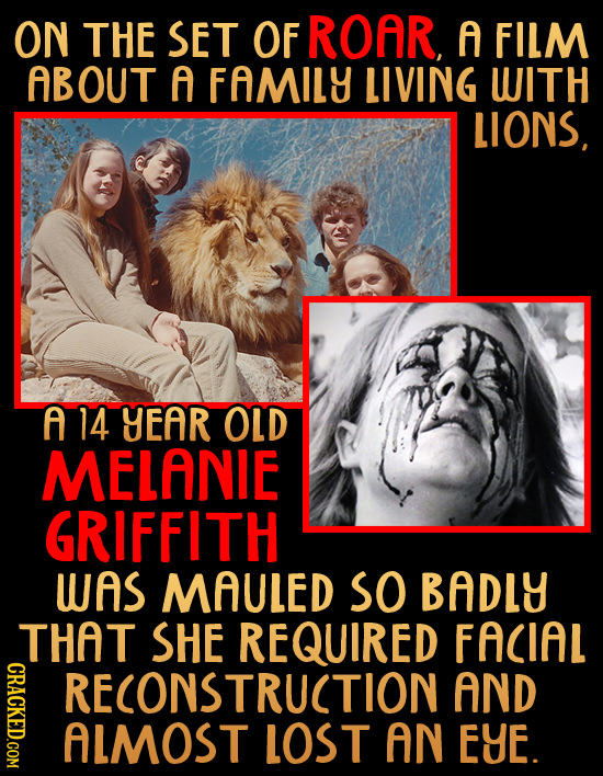 ON THE SET OF ROAR, f FILM ABOUT f FAMILY LIVING WITH LIONS f 14 YEAR OLD MELANIE GRIFFITH WAS MAULED SO BADLY THAT SHE REQUIRED FACIAL RECONSTRUCTION