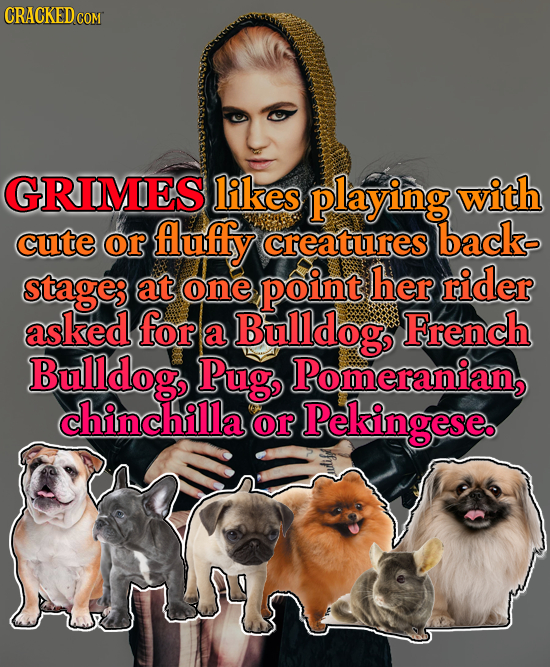 CRACKEDC GRIMES likes playing with cute or fluffy creatures back stage; at one point her rider asked for a Bulldog French Bulldog, Pug Pomeranian, chi