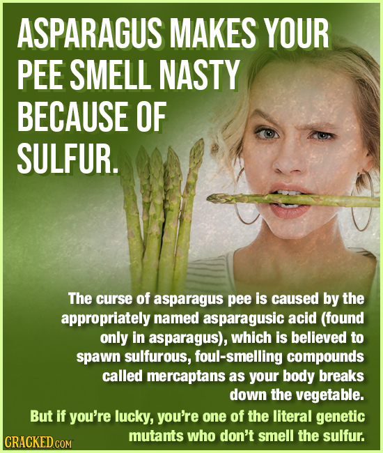 ASPARAGUS MAKES YOUR PEE SMELL NASTY BECAUSE OF SULFUR. The curse of asparagus pee is caused by the appropriately named asparagusic acid (found only i