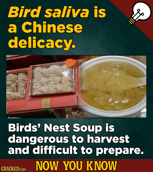 Bird saliva is a Chinese delicacy. Birds' Nest Soup is dangerous to harvest and difficult to prepare. NOW YOU KNOW CRACKED COM
