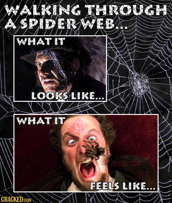 WALKING THROUGHK A SPIDER WEB... WHATIT LOOKS LIKE... WHATIT FEELS LIKE...