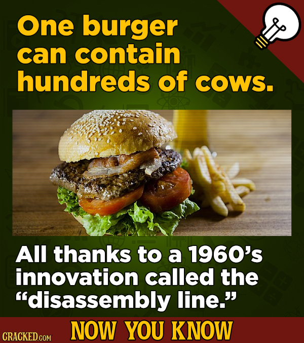 One burger can contain hundreds of COWS. All thanks to a 1960's innovation called the disassembly line. NOW YOU KNOW CRACKED COM