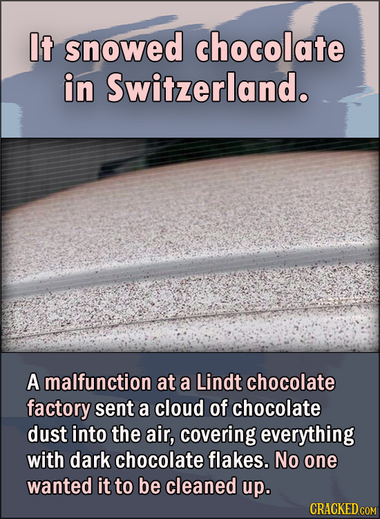 15 Feel Good Stories Of 2020 To End This Wretched Year - It snowed chocolate in Switzerland.  A malfunction at a Lindt chocolate factory sent a cloud