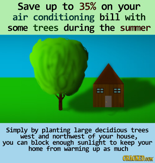 Save up to 35% on your air conditioning bill with some trees during the summer Simply by planting large decidious trees west and northwest of your hou