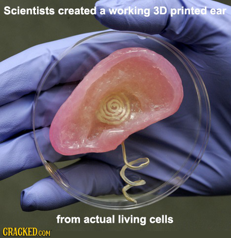 Scientists created a working 3D printed ear from actual living cells CRACKED COM