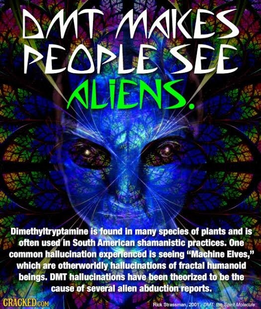 DMT MAKES EOPLE SEE ALIENS. Dimethyltryptamine is found in many species of plants and is often used in South American shamanistic practices. One commo