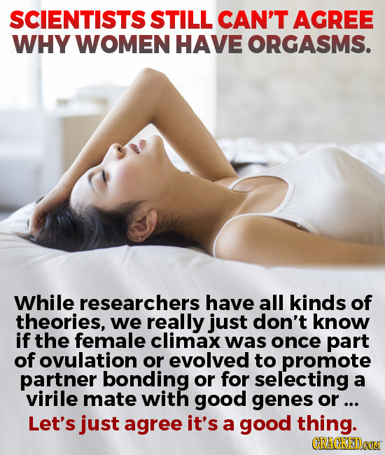 SCIENTISTS STILL CAN'T AGREE WHY WOMEN HAVE ORGASMS. While researchers have all kinds of theories, we really just don't know if the female climax was