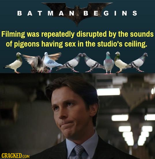BATMANBEGINS Filming was repeatedly disrupted by the sounds of pigeons having sex in the studio's ceiling.