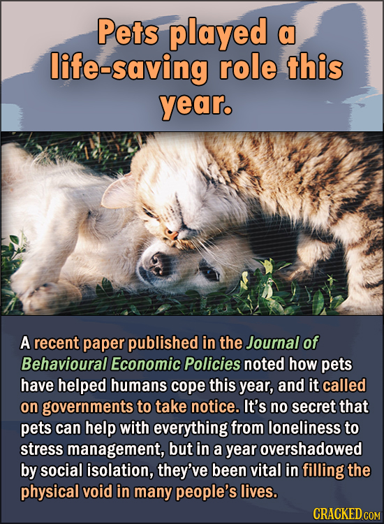 15 Feel Good Stories Of 2020 To End This Wretched Year - Pets played a life-saving role this year.  A recent paper published in the Journal of Behavio
