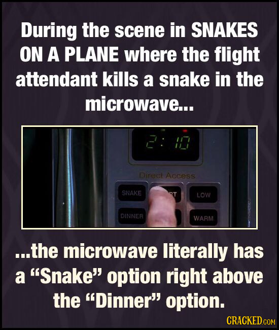 During the scene in SNAKES ON A PLANE where the flight attendant kills a snake in the microwave... Direct Access SNAKE LOW DINNEA WARM ...the microwav