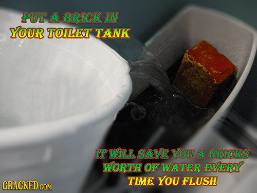 PUT A BRICK IN YOUR TOILET TANK IT WILL SAVE YOU A BRICKS WORTH OF WATER EVERY TIME You FLUSH CRACKED C COM