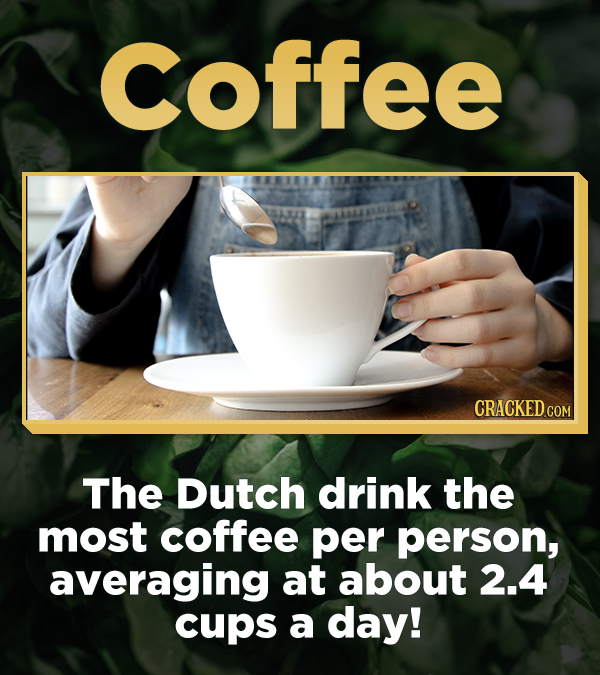 Coffee CRACKEDCON The Dutch drink the most coffee per person, averaging at about 2.4 cups a day!