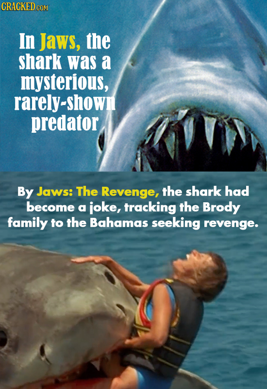 CRACKED COM In Jaws, the shark was a mysterious, rarely-shown predator By Jaws: The Revenge, the shark had become a ioke, tracking the Brody family to