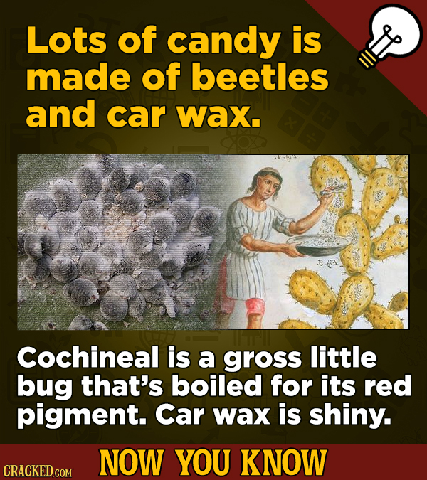 Lots of candy is made of beetles and car wax. Cochineal is a gross little bug that's boiled for its red pigment. Car wax is shiny. NOW YOU KNOW CRACKE